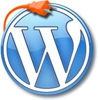 A Word on WordPress Plugins