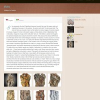 Bell May Art - - A WordPress Artist Website - - A WordPress Artist Website - Single Art Project